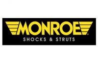Monroe Suspension Components